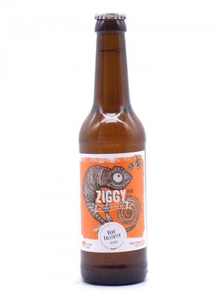 braukollektiv-ziggy-18-flasche